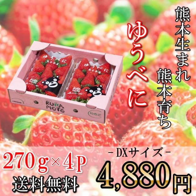 苺 イチゴ いちご ゆうべに 270g×4P DXサイズ 熊本県産 送料無料 果物 フルーツ ギフト