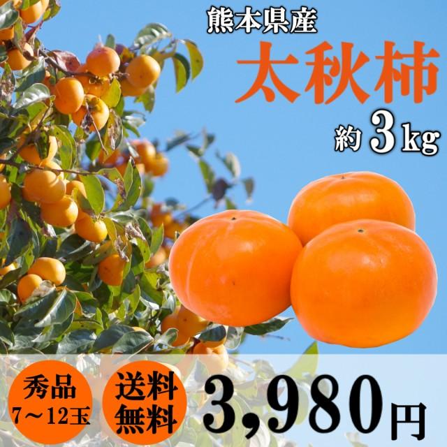 柿 太秋柿 約3kg (7~12玉サイズ) 熊本県産 秀品 果物 贈答 ギフト フルーツ カキ