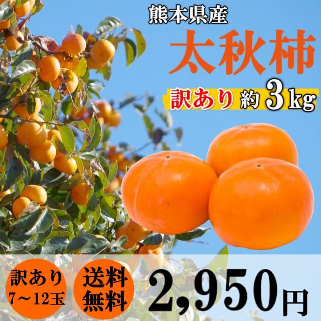 柿 太秋柿 訳あり 約3kg (7~12玉サイズ) 熊本県産 果物 贈答 ギフト フルーツ カキ