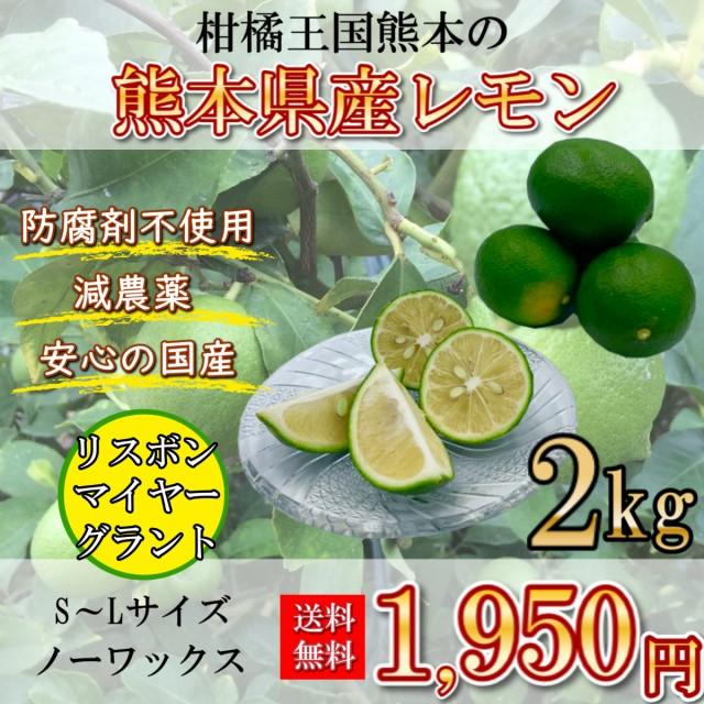 レモン 国産レモン 熊本県産 2キロ S~Lサイズ 送料無料 防腐剤不使用 減農薬 リスボン マイヤー グラント 柑橘