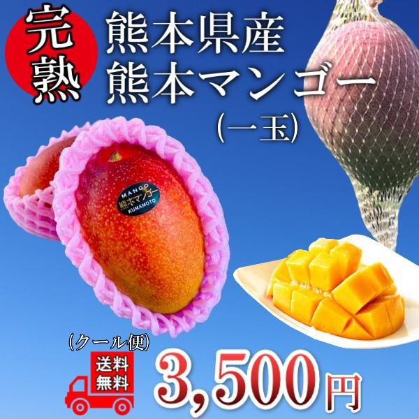 【くまもと県産】マンゴー1玉 送料無料 化粧箱なし 完熟 果物 フルーツ