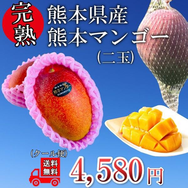 【くまもと県産】マンゴー2玉 送料無料 化粧箱なし 完熟 果物 フルーツ