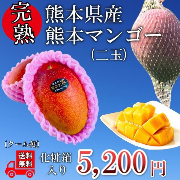 【くまもと県産】マンゴー2玉 送料無料 化粧箱入り 完熟 果物 フルーツ