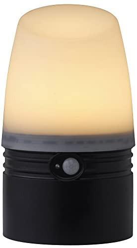 タカショー(Takasho) 乾電池式LEDアプローチ センサーライト L