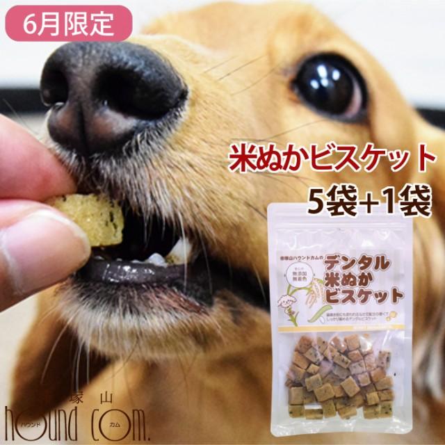 【6月限定】犬用おやつ|デンタル米ぬかビスケット60g 5+1袋セット 米粉 犬用クッキー 犬用ビスケット 硬いおやつ デンタルおやつ 食い