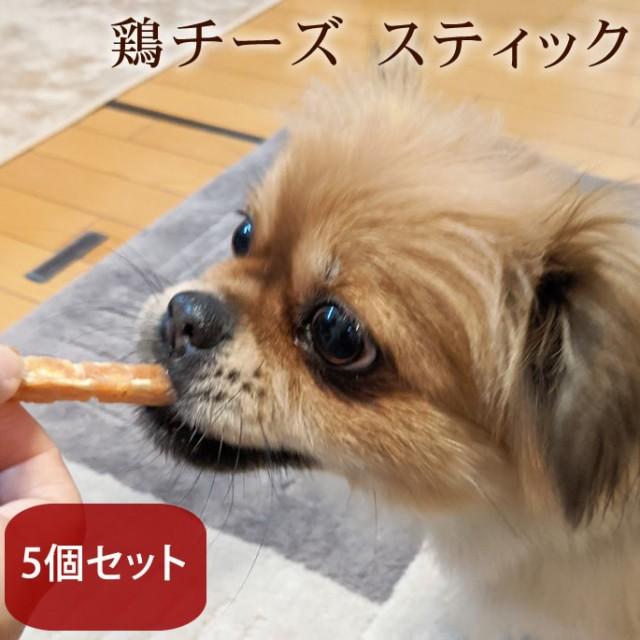 愛犬用おやつ 食べないはずない!? 低塩鶏チーズスティック 5個セット