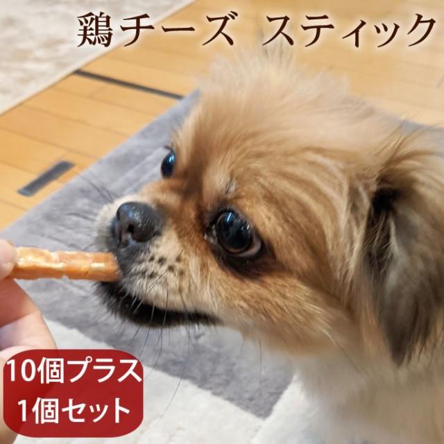 愛犬用おやつ 食べないはずない!? 低塩鶏チーズスティック 10個プラス1個セット