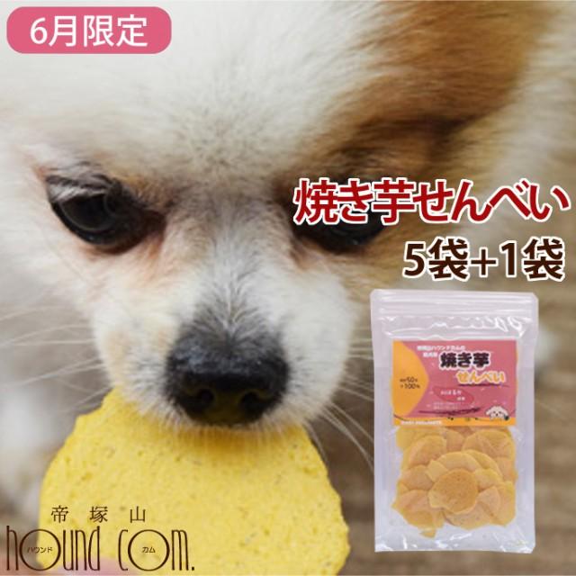 【6月限定】犬 おやつ 無添加 国産手作り 焼き芋 さつまいも 安心の自然のおやつ 保存料不使用 紅はるか おいも 愛犬用 焼き芋せんべい