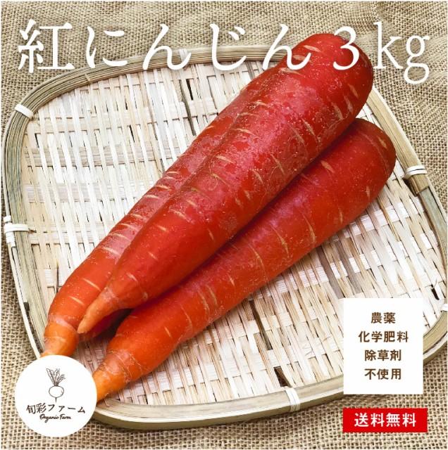紅にんじん 京くれない 3kg 化学肥料・農薬不使用 無農薬 農家直送 送料無料 採れたて 新鮮 旬の野菜 産直 にんじん 人参 農園直