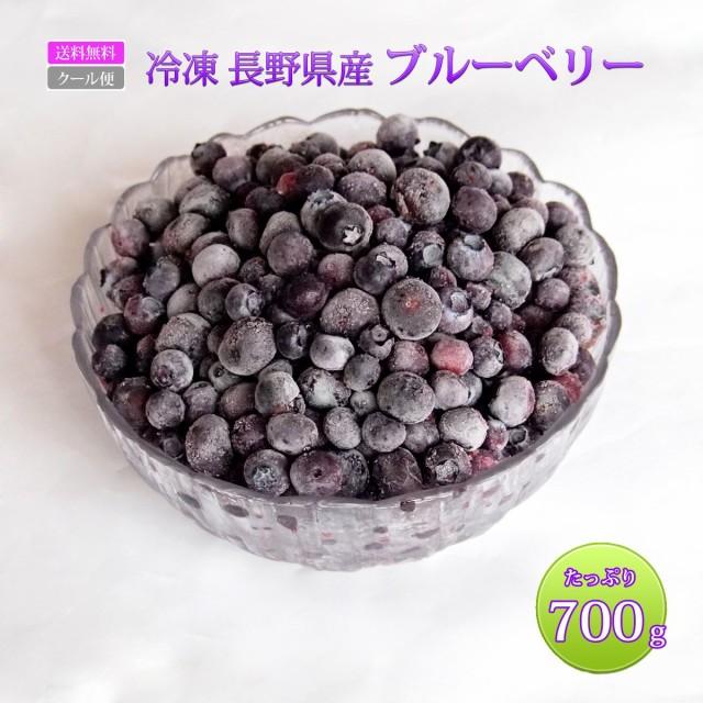 訳あり ブルーベリー 送料無料 国産 長野県産 冷凍 フルーツ たっぷり 大容量 700g 冷凍ブルーベリー 冷凍果実 果物 スムージー ブルーベ