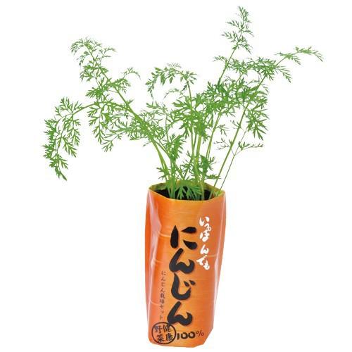 一本でもにんじん 栽培セット 発芽保証 家庭菜園 人参 種 ベランダ