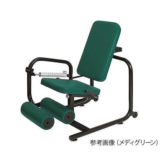 パワーリハビリLEC / TB-781 ライトグリーン<高田ベット製作所>