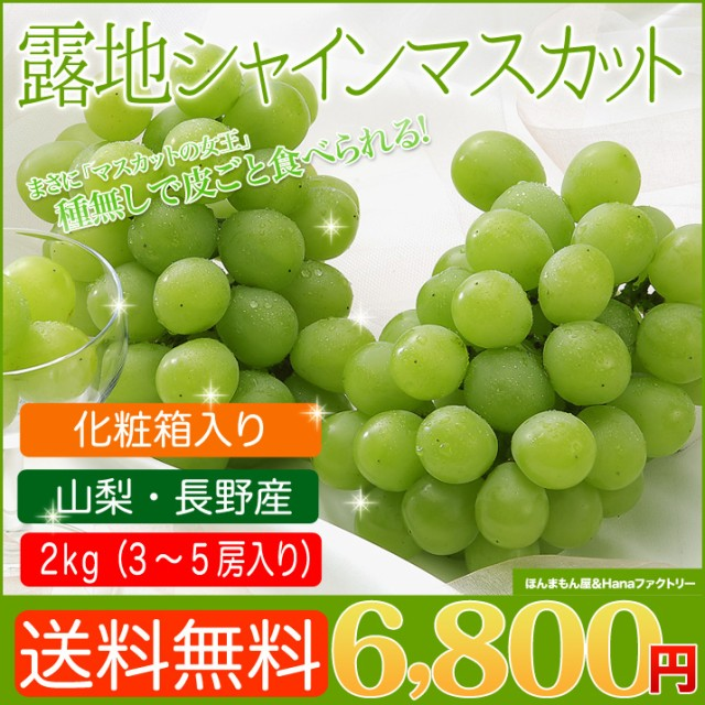 送料無料 シャインマスカット 2kg 3〜5房 フルーツギフト 皮ごと食べられる人気の種無しぶどうです