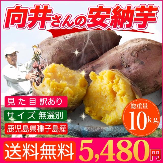 さつまいも 安納芋 訳あり 10kg 送料無料 鹿児島 種子島産 無選別 焼き芋や干し芋にも