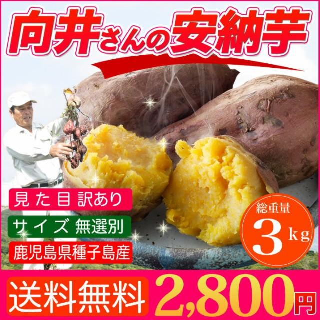 さつまいも 安納芋 訳あり 3kg 送料無料 鹿児島 種子島産 無選別 焼き芋や干し芋にも