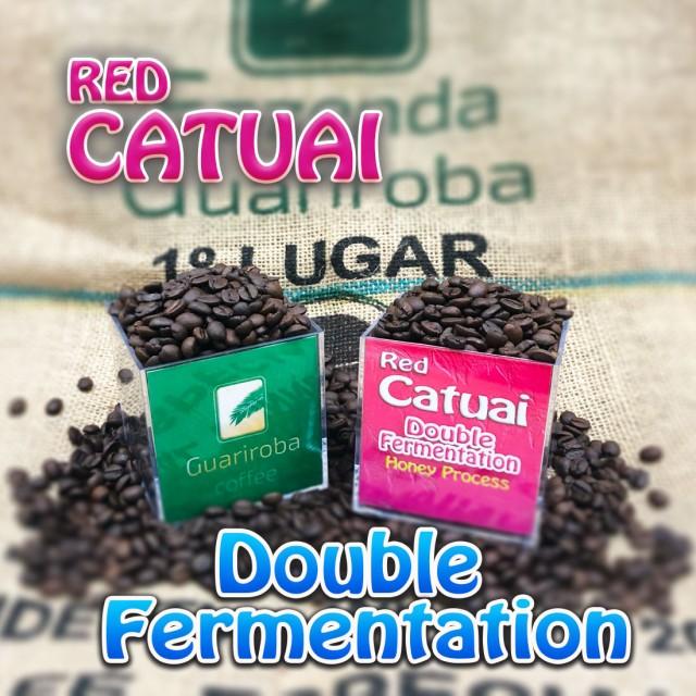 RED CATUAI - Double Fermentation ダブルファーメンテーション製法 フルーティーシリーズ スペシャルティコーヒー豆 200g 送料無料 ブラ
