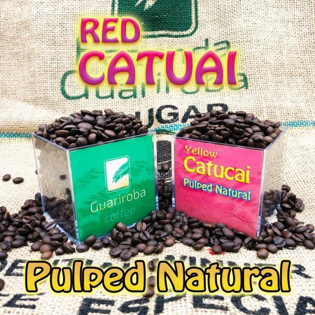RED CATUAI - Pulped Natural スイートシリーズ スペシャルティコーヒー豆 200g 送料無料 ブラジルグアリロバ農園