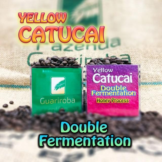 YELLOW CATUCAI - Double Fermentation ダブルファーメンテーション製法 ハーブシリーズ スペシャルティコーヒー豆 200g 送料無料 ブラジ