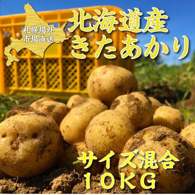 じゃがいも きたあかり 10kg サイズ混合 送料無料 / ジャガイモ 北あかり キタアカリ 馬鈴薯 じゃがいも 北海道 札幌中央卸売市場