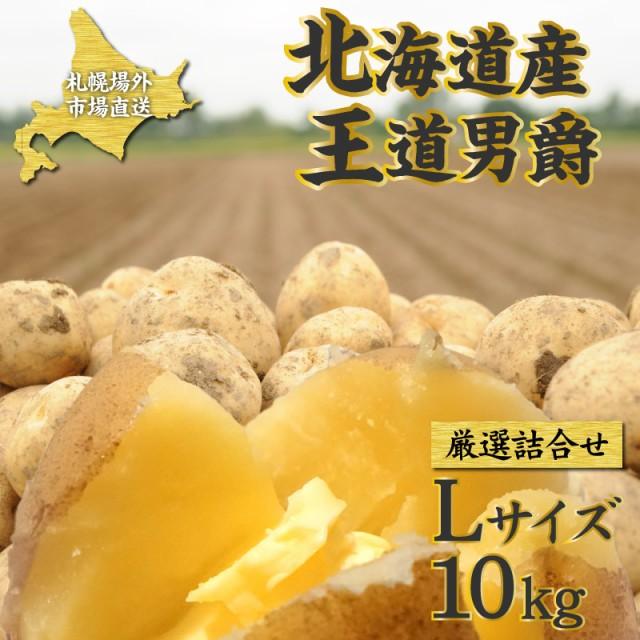 じゃがいも 送料無料 10kg ジャガイモ 男爵いも 王道男爵 Lサイズ 厳選詰合せ 1ケース(10kg)馬鈴薯 じゃがいも 産地直送 北海道 剣淵産