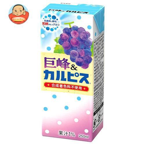 送料無料 【2ケースセット】カルピス 巨峰&カルピス 250ml紙パック×24本入×(2ケース)
