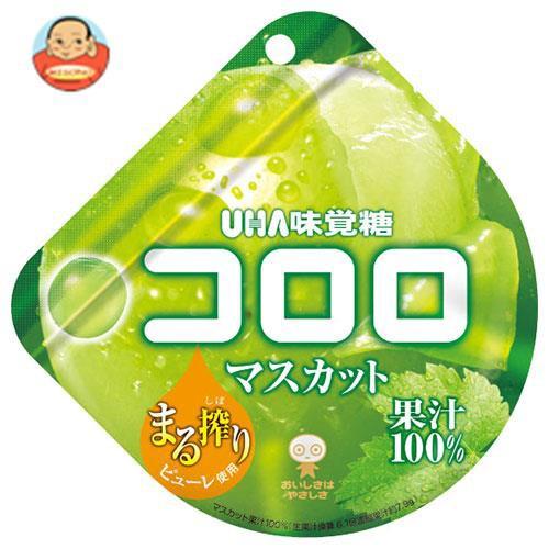 送料無料 【2ケースセット】UHA味覚糖 コロロ マスカット 48g×6袋入×(2ケース)