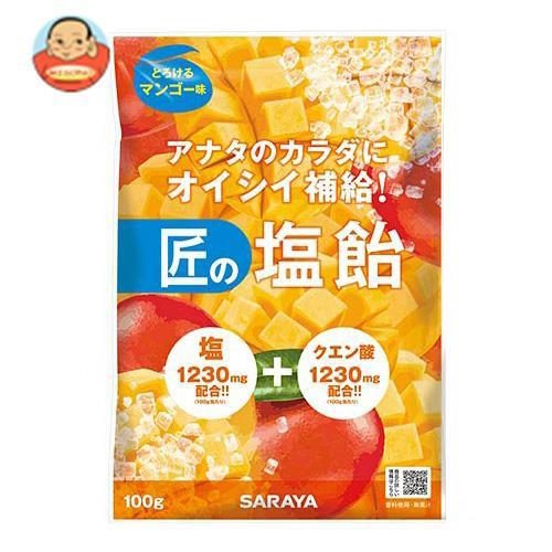 送料無料 サラヤ 匠の塩飴 マンゴー味 100g×20本入