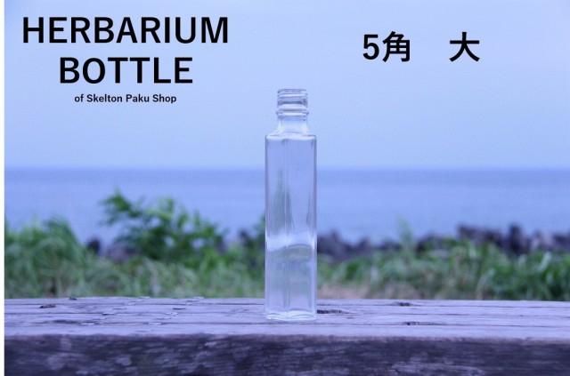 ハーバリウム 瓶 ボトル【5角形 大】ガラス瓶 キャップ付 透明瓶 花材 ウエディング プリザーブドフラワー インスタ SNS ボト