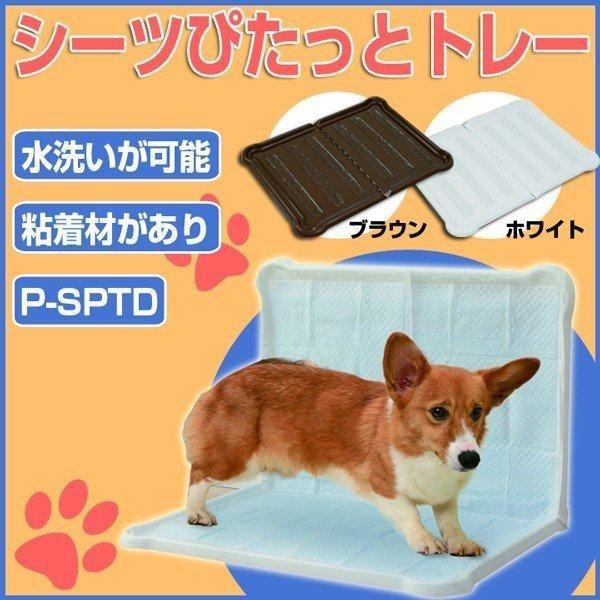 犬用トイレ 衛生用品 ダブルワイド ペットトレー シーツぴたっとトレー ペット用トレー アイリスオーヤマ P-SPTD ホワイト ブラウン 犬用