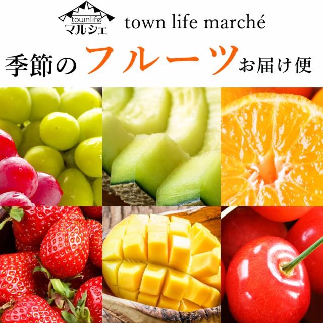 【 豊洲市場より直送 】 季節のフルーツお届け便 ※日時指定不可