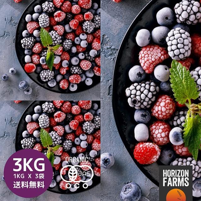 有機 JAS 認証 オーガニック 冷凍 ミックスベリー 1kg x 3 合計3kg チリ産 無糖 無添加 砂糖不使用 冷凍フルーツ 冷凍果物 業務用