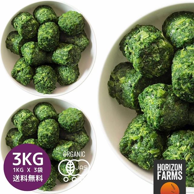 有機 JAS 認証 オーガニック 冷凍 ケール キューブ 1kg x 3 合計3kg オランダ産 無糖 無添加 砂糖不使用 冷凍フルーツ 冷凍果物 業務用