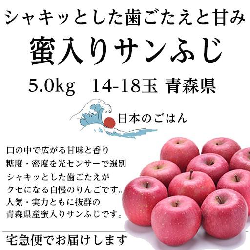 【12月上旬より順次発送】青森県産 蜜入りサンふじ 14〜18玉 約5kg サンふじリンゴ りんご 蜜入り りんご 5kg 蜜入りりんご サンふじりん