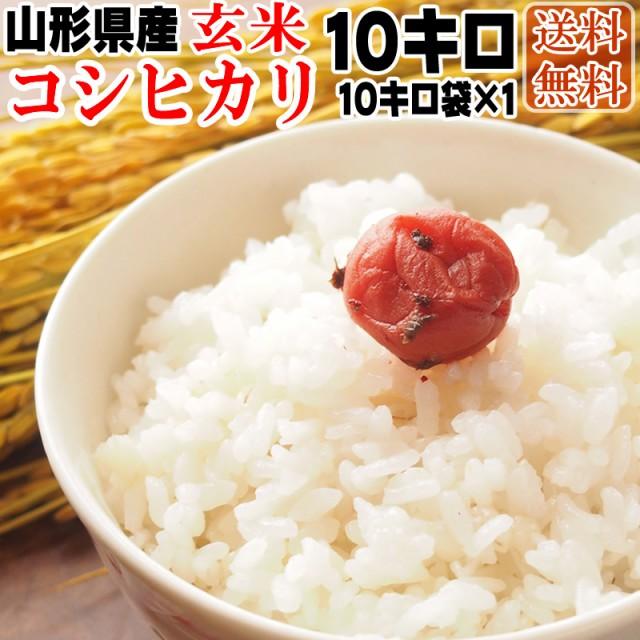 【送料無料】 令和元年度産 山形県産 お米 コシヒカリ 玄米 10kg (10kg袋×1)【白米・無洗米・分づき】