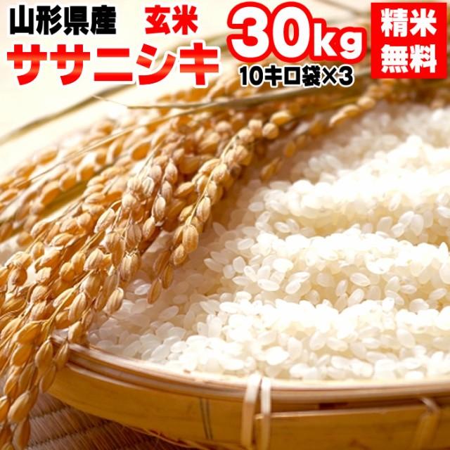 米 お米 30kg (10kg袋×3) ササニシキ 玄米 令和2年度 山形県産 送料無料 白米・無洗米・分づき
