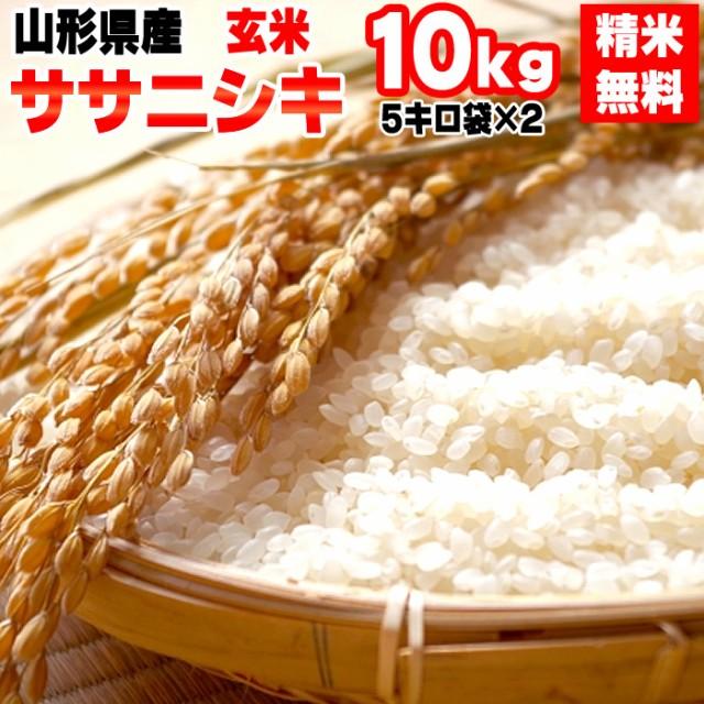 米 お米 10kg (5kg袋×2) ササニシキ 玄米 令和2年度 山形県産 送料無料 白米・無洗米・分づき