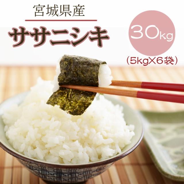 米 お米 5kg×6 ササニシキ 玄米30kg 令和2年産 宮城県産 送料無料 白米・無洗米・分づき