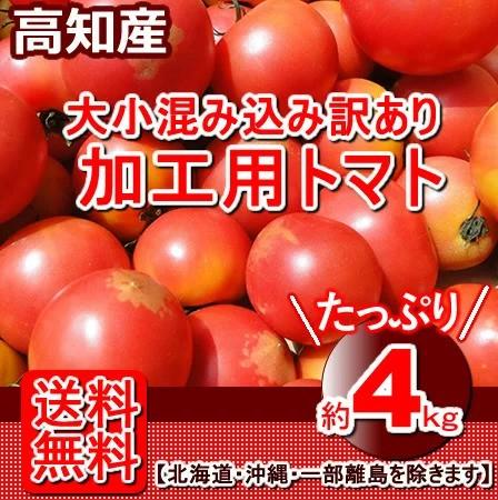 高知産・訳あり桃太郎トマト約4kgたっぷりとまとトマトサミット