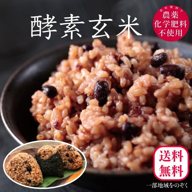 【送料無料】酵素玄米 冷凍 もっちり熟成90g 20個セット 栽培期間中農薬・化学肥料不使用 和日庵 もち熟玄米 真空パック 残留農薬ゼロ