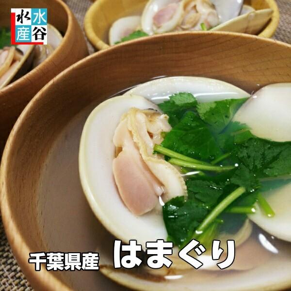 千葉県産ハマグリ 1kg 酒蒸し お吸い物 ひな祭り 御祝い