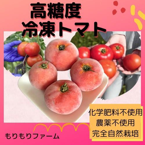 7月下旬発送 ≪クール便送料無料≫ 農薬・化学肥料不使用 まるごと冷凍トマト 2kg 安心安全 青森県産