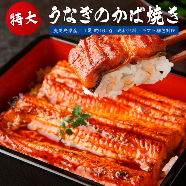 鹿児島県産 鰻のかば焼き 1尾 土用の丑 無添加 父の日 国産ウナギ 送料無料 1尾 大サイズ 160g うなぎ 鰻 丑の日 夏 買い回り 買いまわり