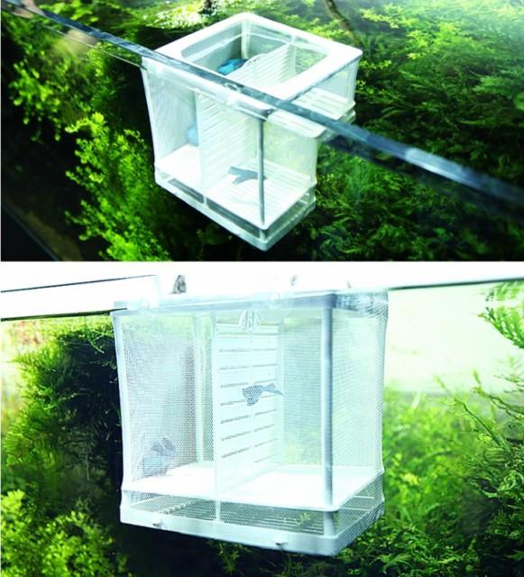 水族館 繁殖箱 sサイズ ダブルグッピー 孵化インキュベーター 隔離ボックス 多機能 繁殖水槽 隔離ネット 産卵箱  吸盤付き
