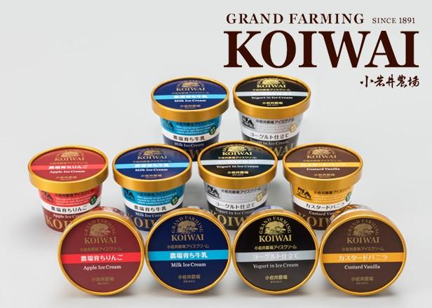 小岩井農場特製アイスクリーム10個セット [バニラ&牛乳&りんご&ヨーグルト]【スイーツ ギフト】