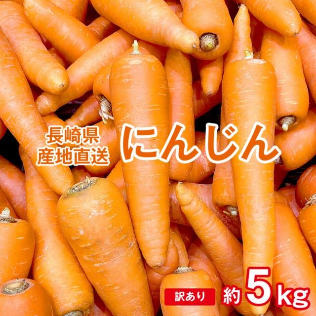 送料無料 人参 にんじん ニンジン 訳あり 長崎県産 長崎 カレー シチュー 野菜 約 5kg サイズ混合 産地直送 野菜