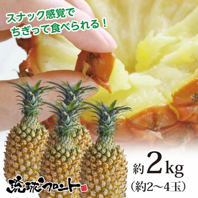 【送料無料】沖縄県産 スナックパイン 約2kg(約2〜4玉) 沖縄 パイナップル ボゴールパイン