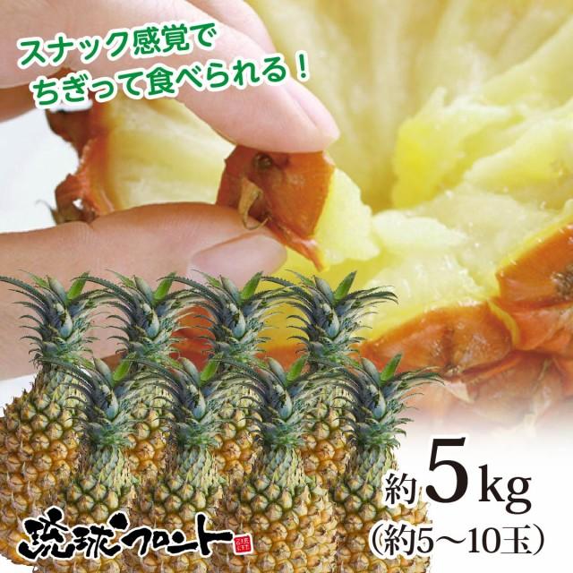 【4月下旬頃より発送開始予定】【送料無料】沖縄県産 スナックパイン 約5kg(約5〜10玉) 沖縄 パイナップル ボゴールパイン