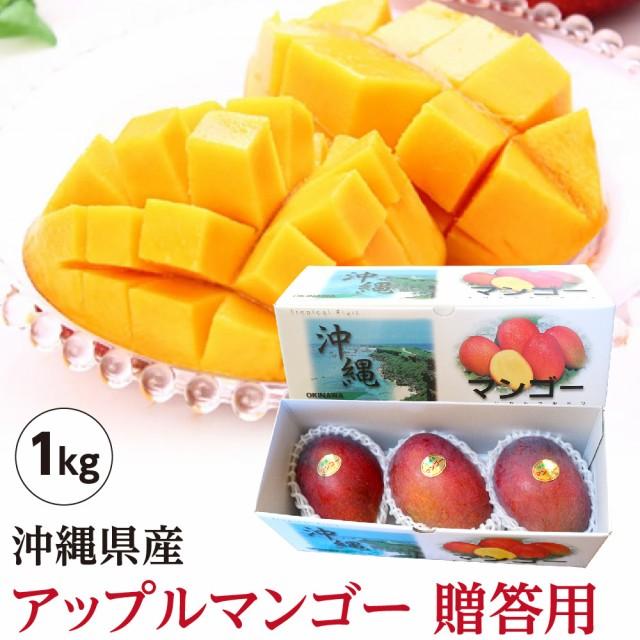【送料無料】 沖縄県産 アップルマンゴー 贈答用 約1kg(2玉〜3玉)