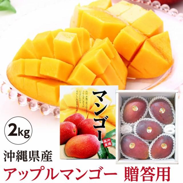 【送料無料】 沖縄県産 アップルマンゴー 贈答用 約2kg(4玉〜6玉)