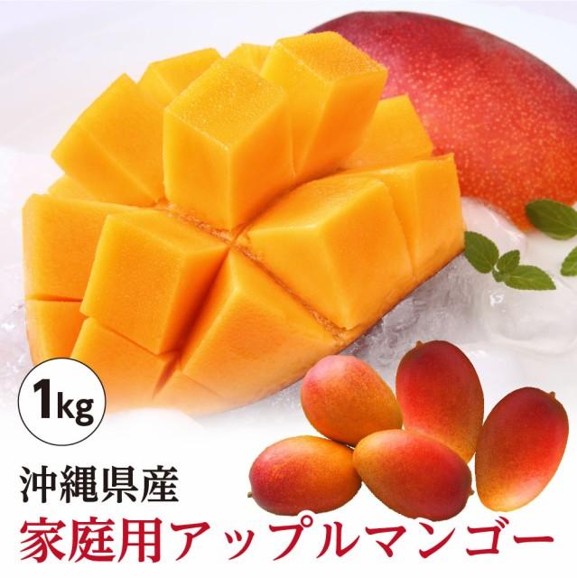 【送料無料】 沖縄県産 アップルマンゴー 家庭用 約1kg(2玉〜4玉) 訳あり